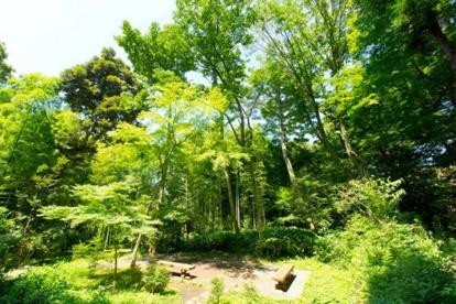 岡本下山小緑地の画像1