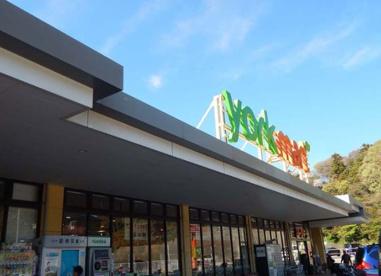ヨークマート 戸塚深谷町店の画像1