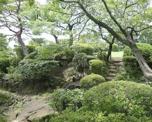 日本庭園等々力