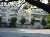 柏市立 柏第八小学校