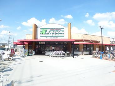 食品館アプロ尼崎大庄店の画像1