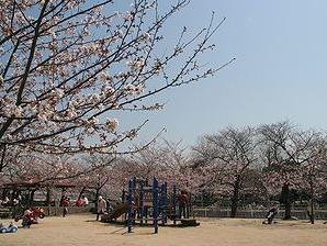 妙法寺川公園の画像1