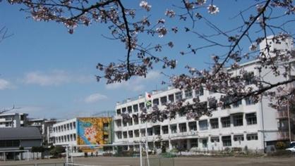八王子市立 高尾山学園小学部の画像1