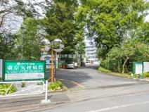 東京天使病院