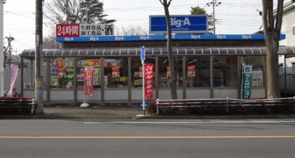 ビッグ・エー 松ヶ丘店の画像1