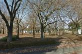 蜂ノ巣公園