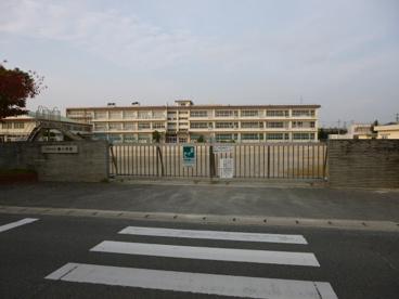 楠小学校の画像2