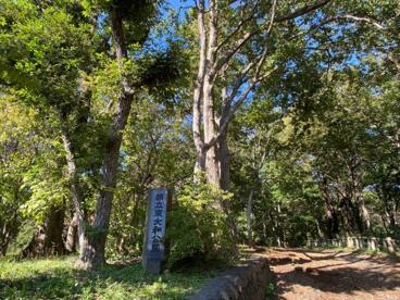 都立東大和公園の画像1