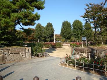 大井戸公園の画像2