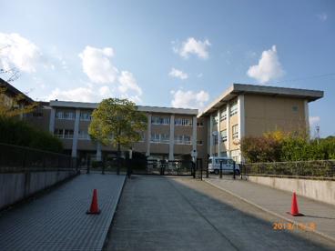 桜小学校の画像1