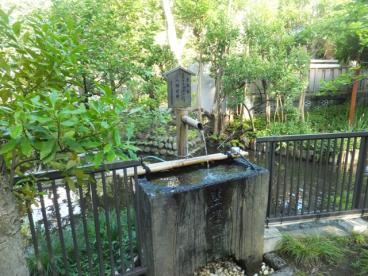 富岡八幡宮の画像5