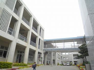 八重瀬町立 東風平小学校の画像4