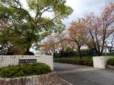 平洲中学校