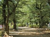 玉川上水給水路緑道