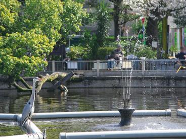 清水池公園の画像1