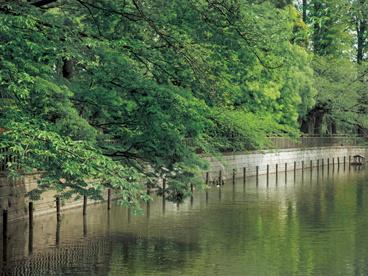目黒区立碑文谷公園の画像1