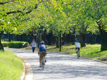 都立代々木公園の画像1