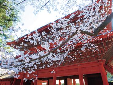 増上寺の画像1