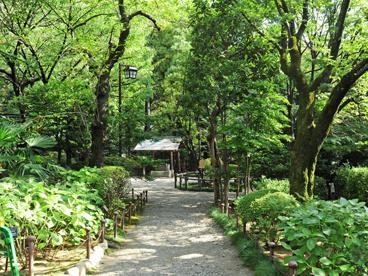 乃木神社の画像2