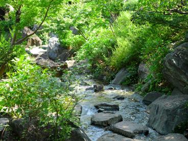檜町公園の画像2