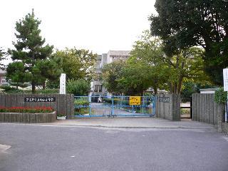向山小学校の画像1