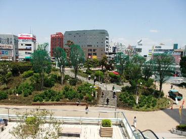 津田沼公園の画像1