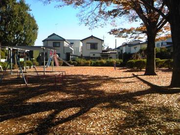 しらかし公園 常盤平の画像2