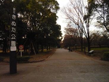 砧公園の画像3