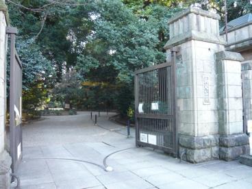 駒沢公園の画像3