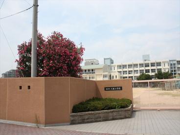 明石市立 大観小学校の画像3