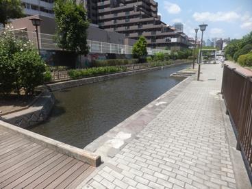 古石場川親水公園の画像2