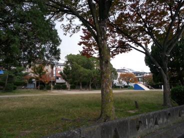 平岡公園の画像1