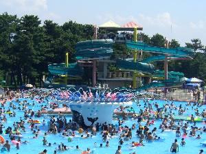 浜寺公園プールの画像1