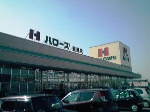 ハローズ 新涯店の画像