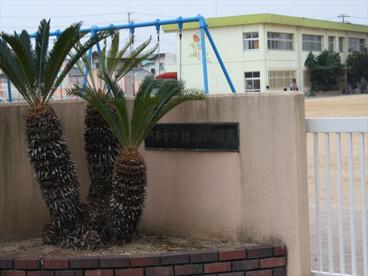 明石市立 錦浦小学校の画像5