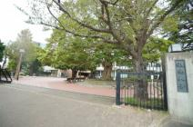 淑徳大学(千葉キャンパス)