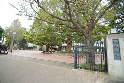 淑徳大学(千葉キャンパス)の画像1