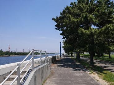 浜寺公園の画像4