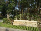 尼崎市都市緑化植物園 上坂部西公園