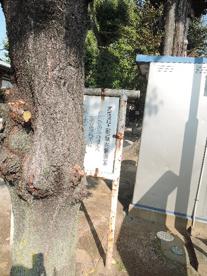 北区立 上田端児童遊園の画像3