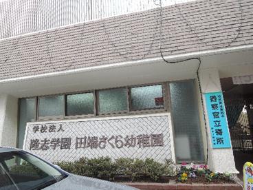 田端さくら幼稚園の画像1