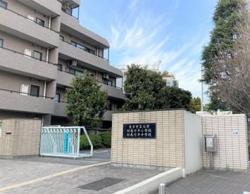 東京学芸大学附属竹早中学校の画像1