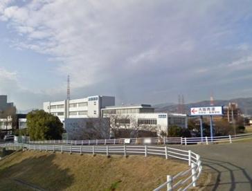 大阪青凌高等学校の画像1