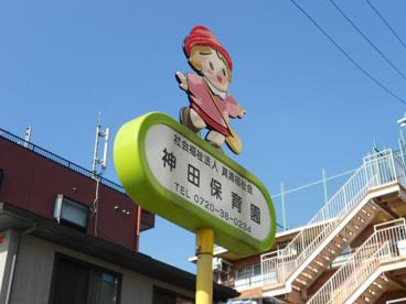 神田保育園の画像1