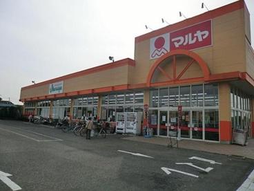 マルヤ 南鎌ケ谷店の画像1
