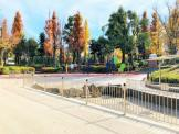 区立教育の森公園