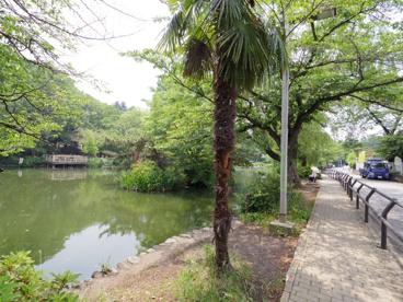 東京都立石神井公園の画像1
