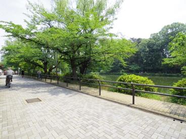東京都立石神井公園の画像2