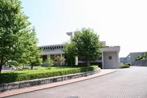 帝塚山大学 少林寺拳法部