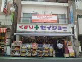 くすりセイジョー 九品仏店